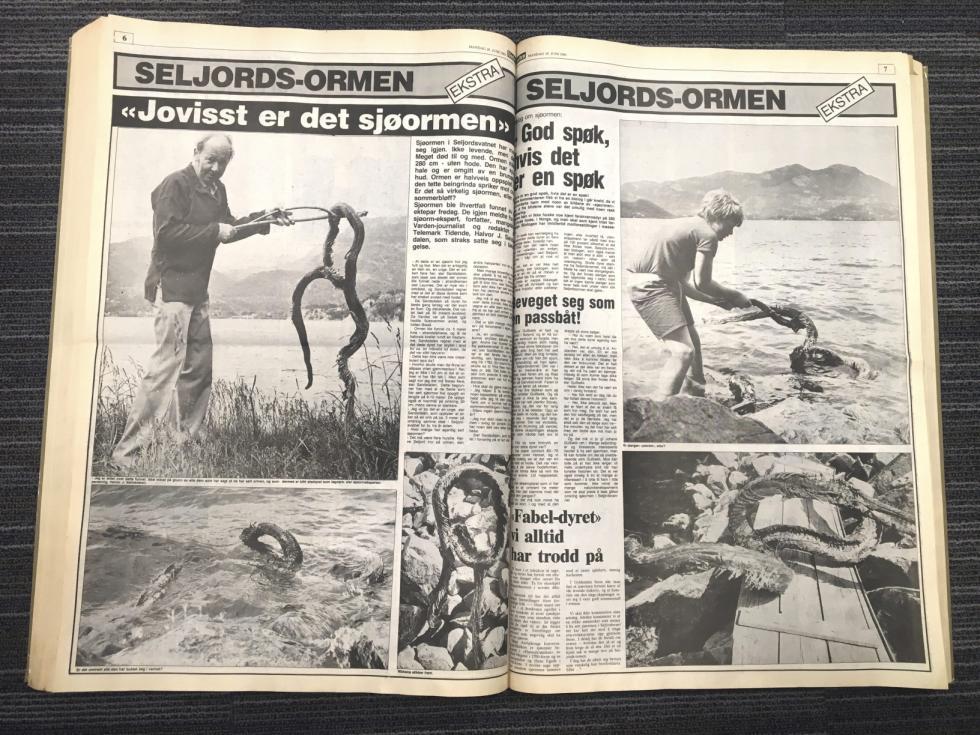 Bildet fra avisartikel om sjøormen med Halvor J. Sandsdalen i 1983 Foto: varden.no