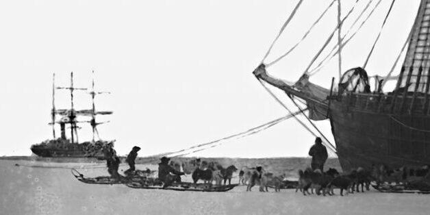 Båtar og hundar