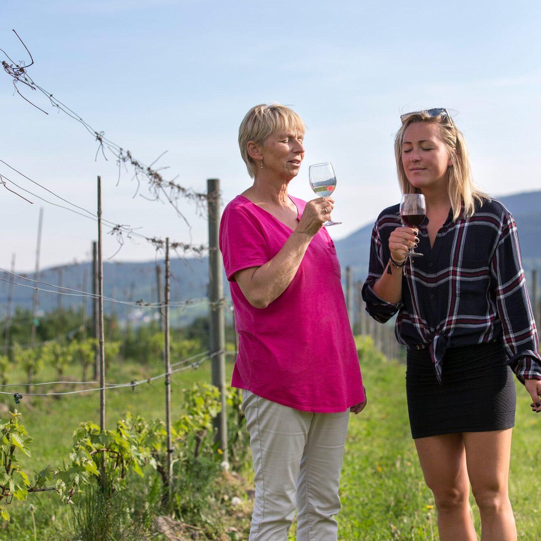 Vinsmaking med Wenche på Lerkekåsa vingård
