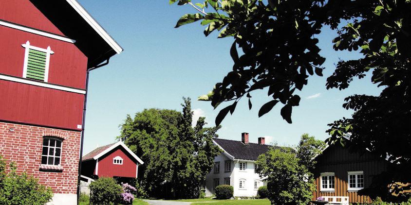 spesialitet-nyhuus-garden-foto-halvor-holtskog