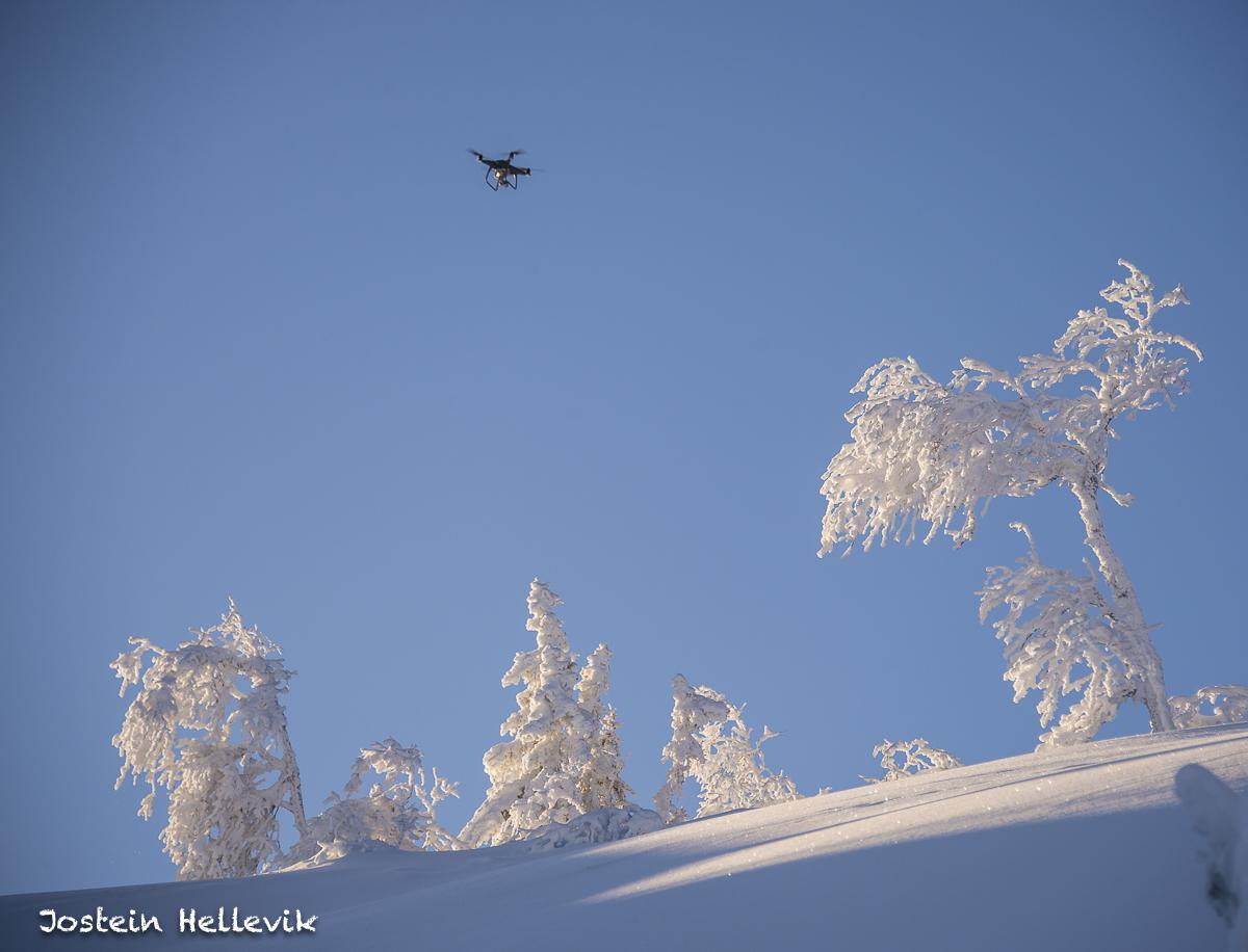 Foto: Jostein Hellevik