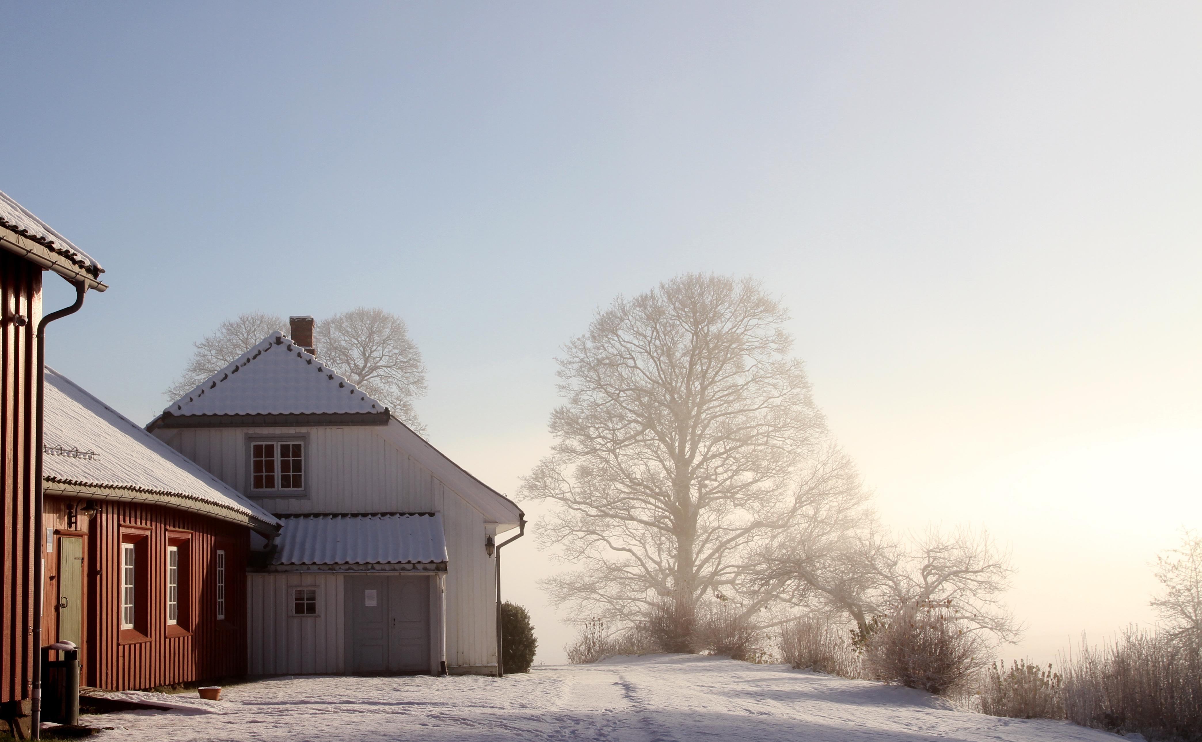 HENRIK IBSEN MUSEUM: Museet er gården Venstøp som lille Henrik og familien flyttet til da gutten var sju år. Reisen til Venstøp fra byen er bare fem kilometer, men i 1835 var nok dette en lang reise.