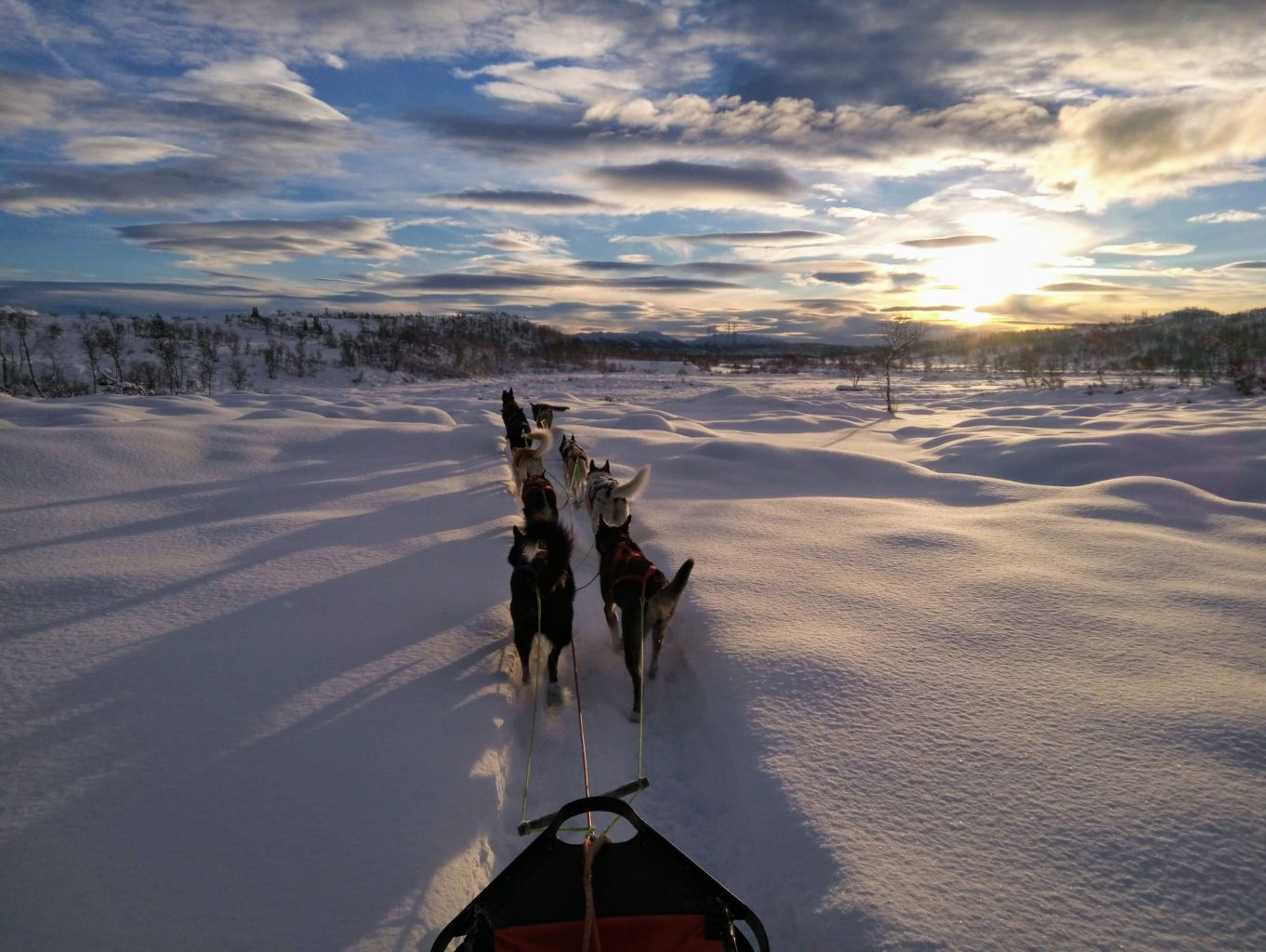 Telemark Husky Tour, Rauland