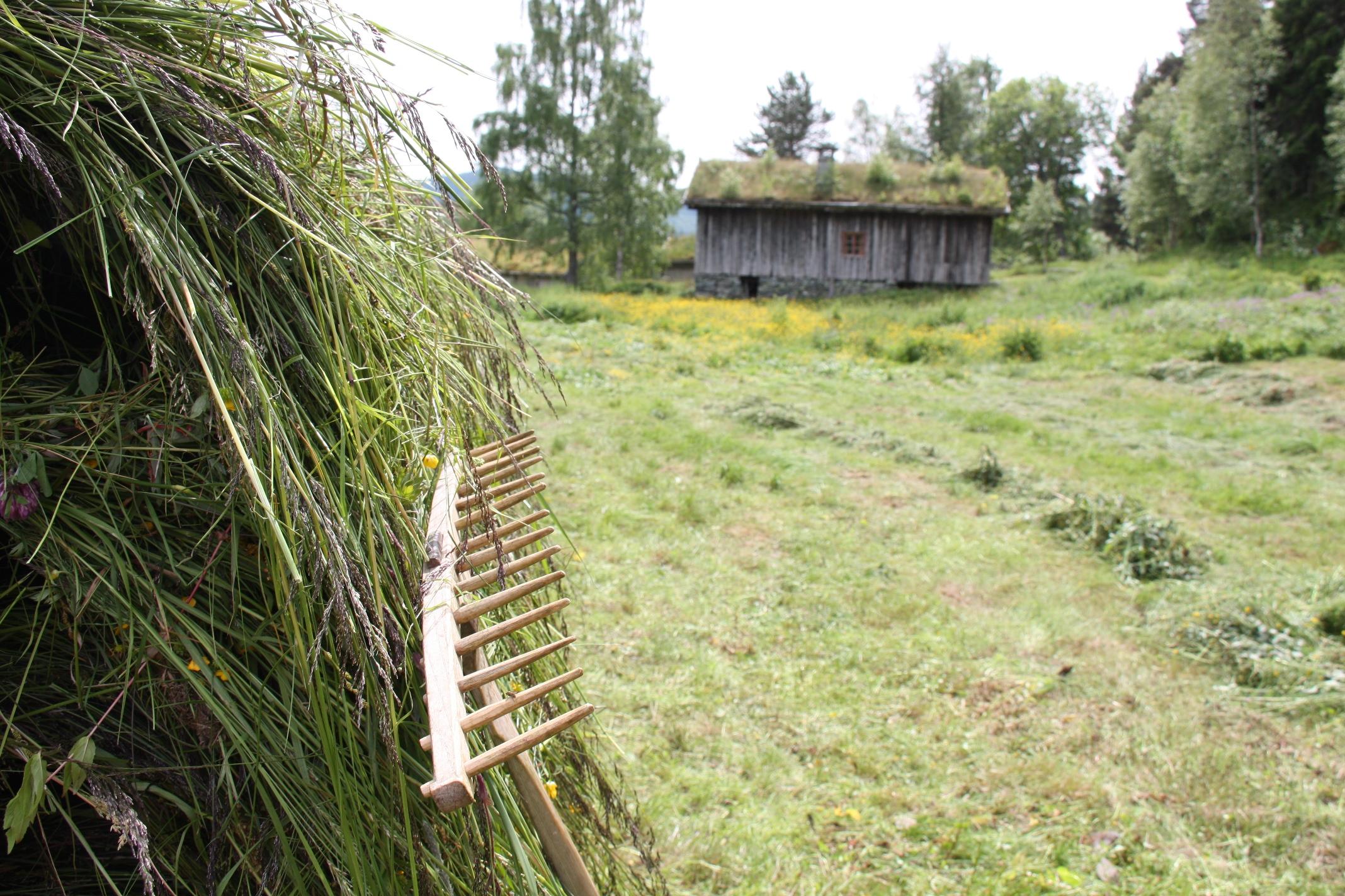 Hesje på Vest-Telemark Museum Eidsborg