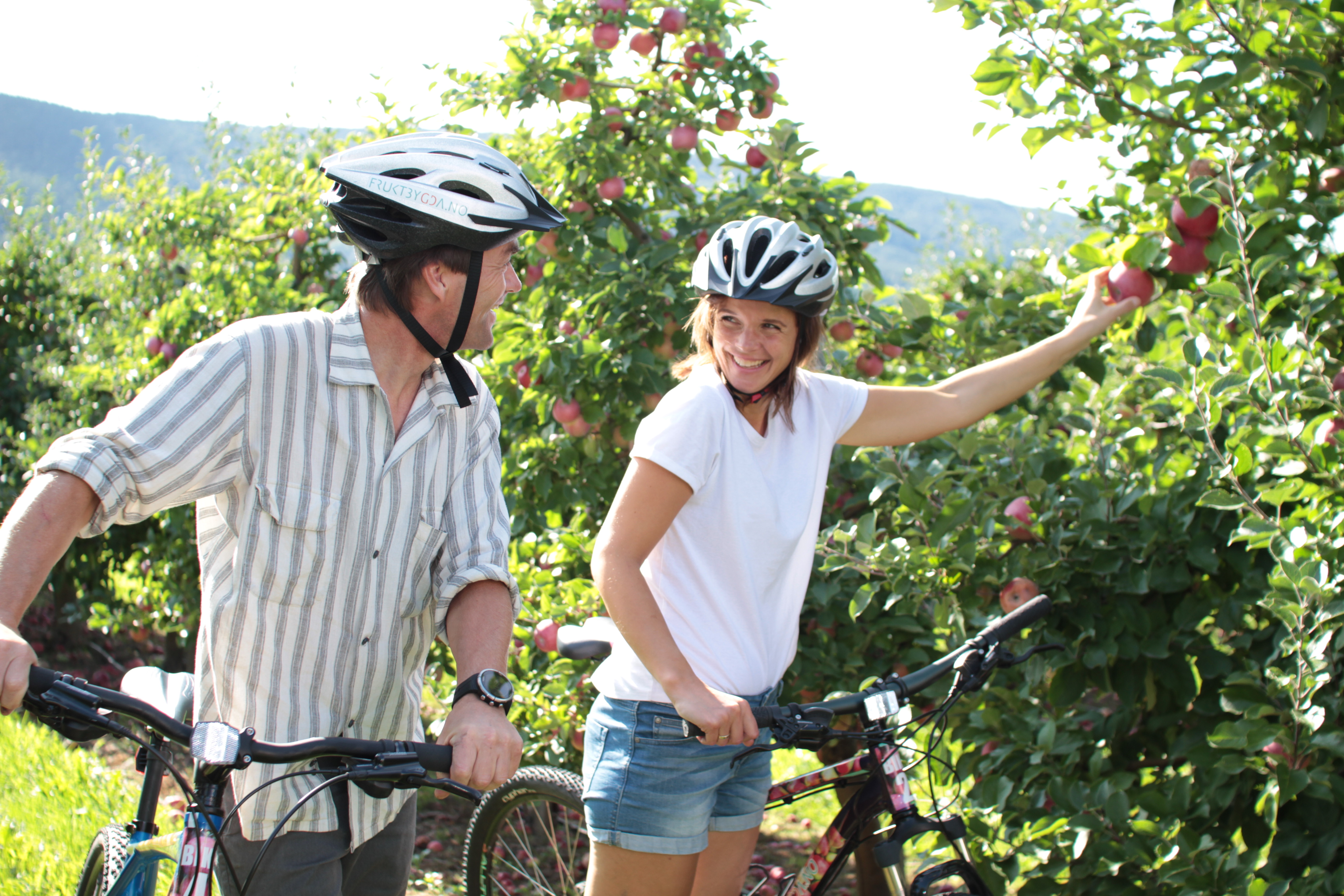 På sykkeltur i Fruktbygda