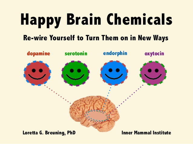 happy-brain-chemicals-dopamine-serotonin-oxytocin-and-endorphin-1-638
