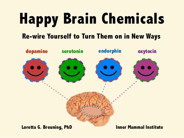happy-brain-chemicals-dopamine-serotonin-oxytocin-and-endorphin-1-638