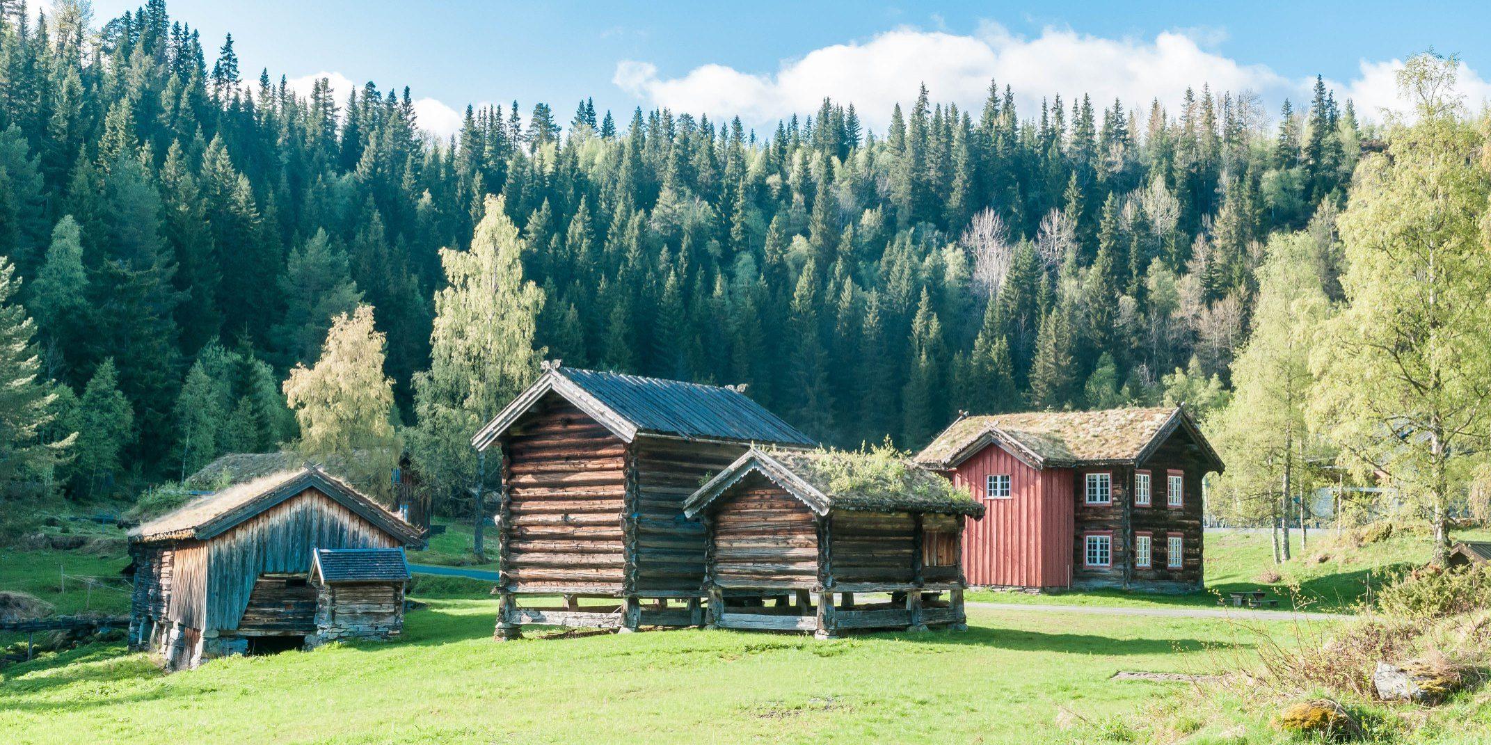 Deler av bygdetunet på Vest-Telemark Museum Eidsborg Foto: Harald Naper