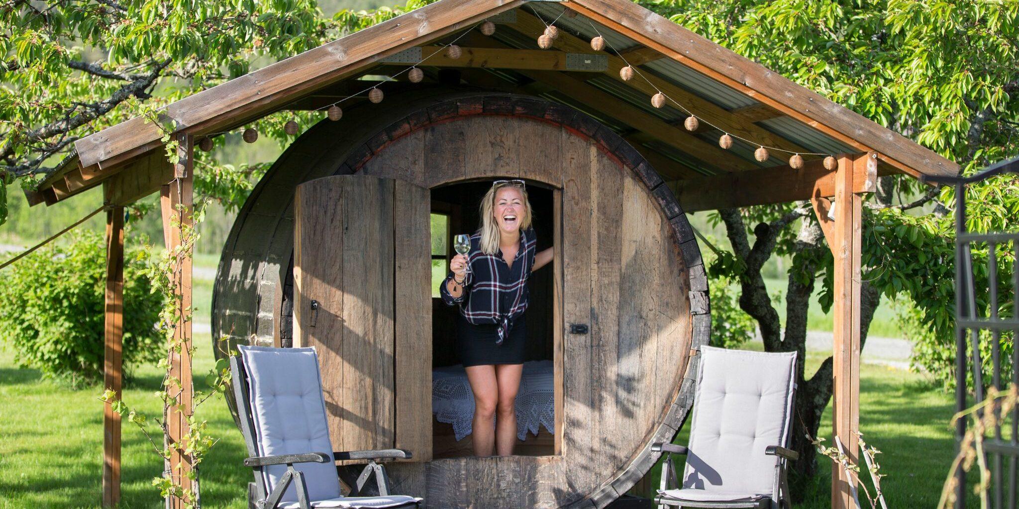 Verdens norligste vingård, Lerkekåsa vingård i Fruktbygda  Gvarv