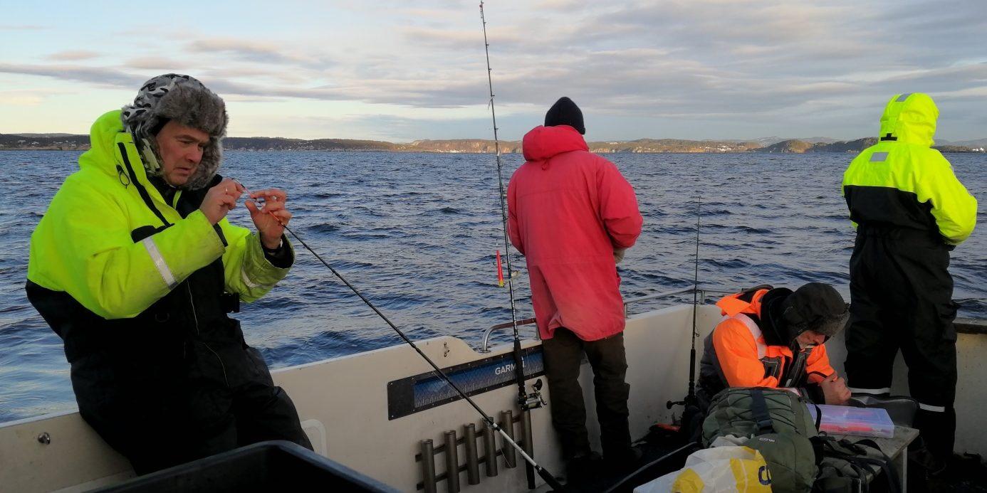 Ivrige fiskere i Langesundsfjorden