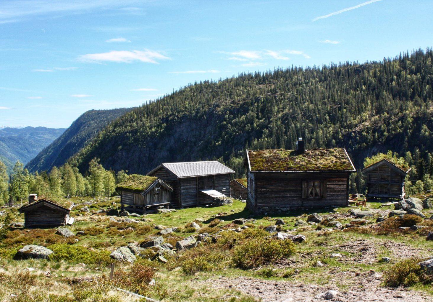 Den gamle fjellgarden Ripilen i Tokke. Torbjørg Ripilen var ei av fleire som kvad Draumkvedet for folkloristen Moltke Moe. Foto: Anne Gundersen